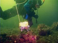 Подводный аппарат ГНОМ сопровождает дайвера