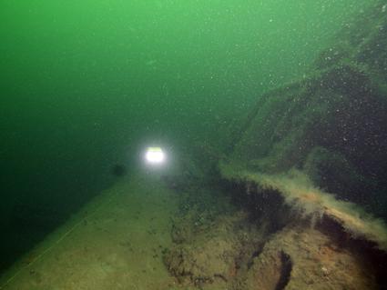Подводные микророботы гном широко